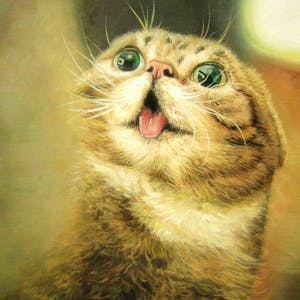 Custom Excited Cat Oil Painting