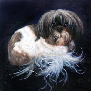 drawing dogs puppies learn to draw a variety of canine companions step by step how to draw paint